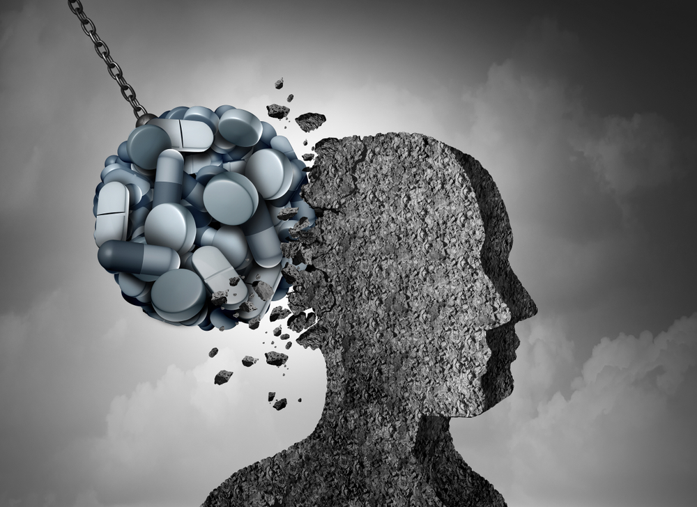 opiates and the brain